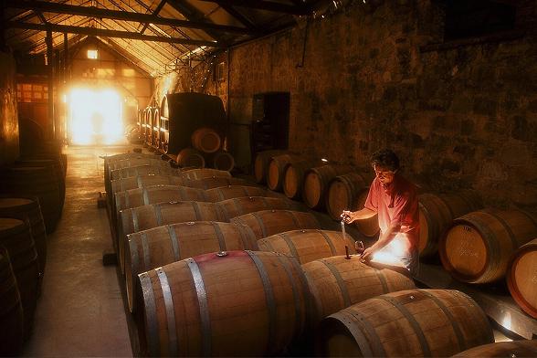 Wendouree Wines文多酒莊