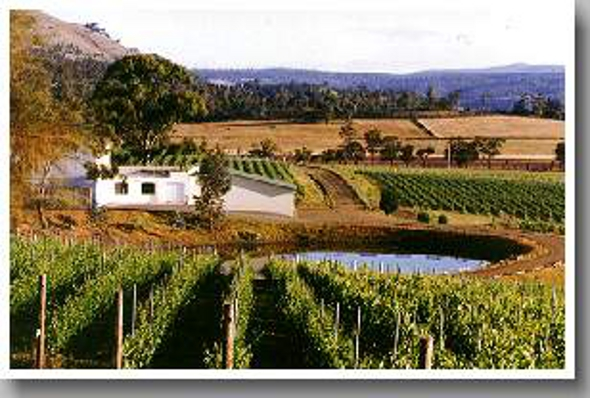 Domaine A Wines 亙古酒莊